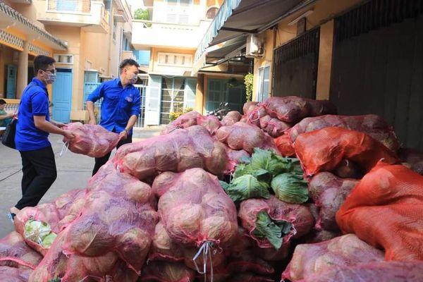 Bạn trẻ TP. HCM 'giải cứu' nông sản cho nông dân Hải Dương