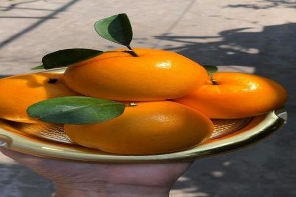 Bánh bao độc lạ được 'săn lùng' dịp Rằm tháng Giêng
