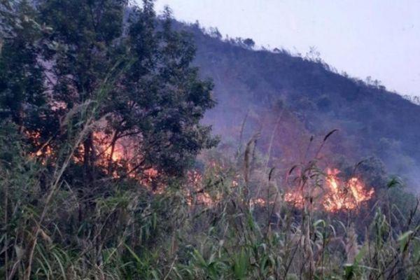 Huy động nghìn người xuyên đêm dập đám cháy rừng ở Lai Châu