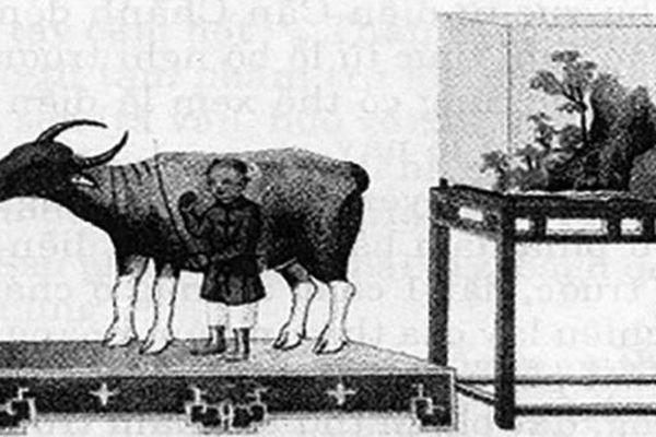 Tục tế trâu thời nhà Nguyễn
