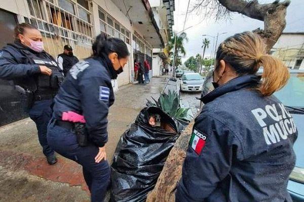 Bà lão 65 tuổi sống trong túi rác suốt 8 năm, lý do đằng sau khiến ai nấy đều phải rơi lệ
