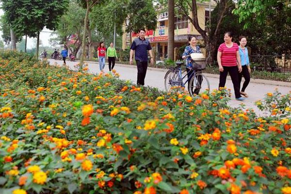 Phát động cuộc thi ''Đoạn đường - Tuyến phố nở hoa''