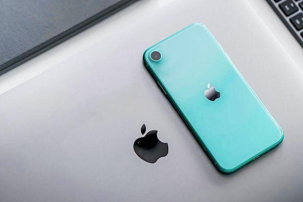 Háo hức với tin vui bất ngờ về iPhone giá rẻ mới của Apple