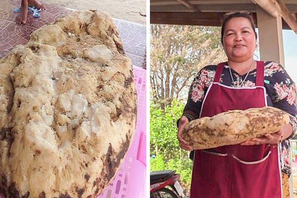 Người phụ nữ tìm thấy vật thể nghi là Long Diên Hương