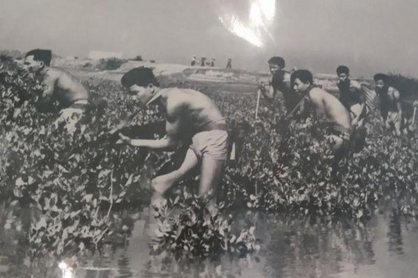 Chiến tích Đặc công Việt Nam thổi bay tàu địch ở cảng Rạch Dừa