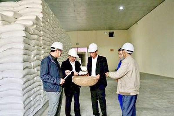Đảm bảo công khai, minh bạch trong đấu thầu mua gạo dự trữ quốc gia