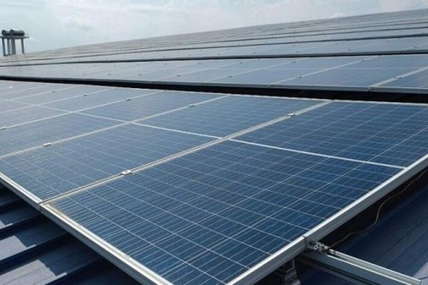 Lâm Đồng vào cuộc 'siết' hoạt động đầu tư điện mặt trời