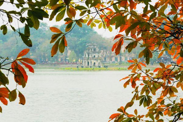 Chùm ảnh: Mùa cây thay lá -Bản nhạc trữ tình của Hà Nội
