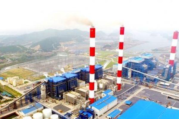 Cơ Điện Lạnh bán tiếp 12 triệu cổ phiếu QTP