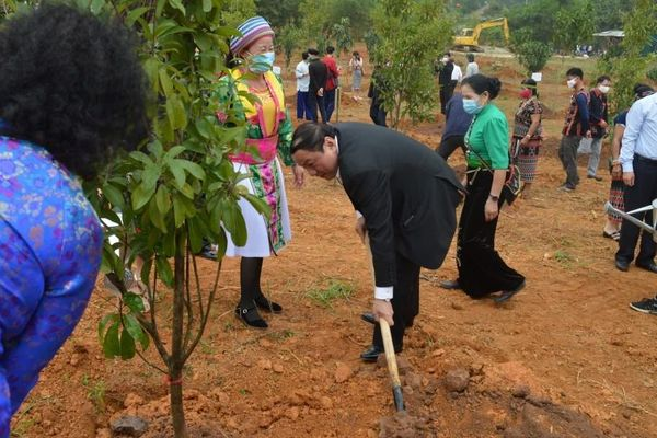 Phát động Tết trồng cây 'Đời đời nhớ ơn Bác Hồ'