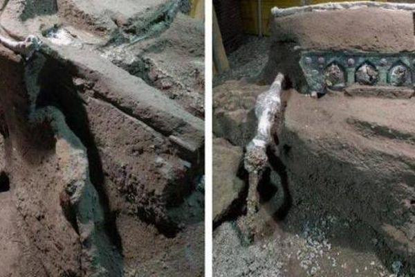 Phát hiện cỗ xe nghi lễ 2.000 năm tuổi tuyệt đẹp trong biệt thự