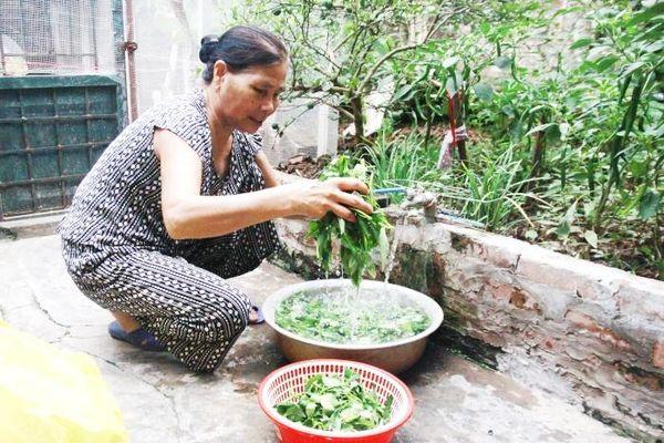 Mang nước sạch đến với người dân nông thôn