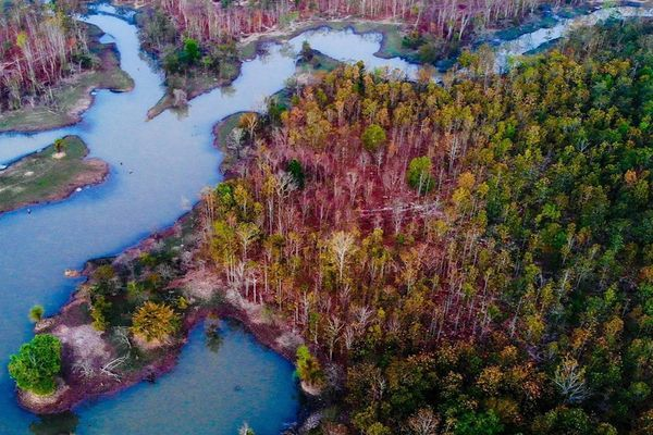Khu rừng ở Tây Nguyên đẹp tựa trời Âu