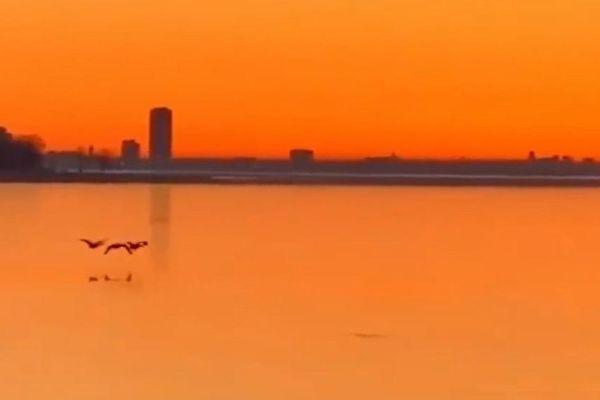 Chim bay qua hồ đóng băng ở Canada