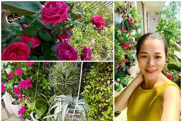 'Đã mắt' vườn ban công nở hoa 4 mùa trong nhà ca sĩ Mỹ Lệ