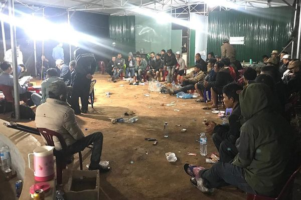 Triệt phá trường gà 1.000m2 ở Gia Lai, bắt giữ 36 con bạc