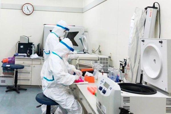 HCDC TP.HCM tạm ngừng lấy mẫu mẫu xét nghiệm dịch vụ COVID-19
