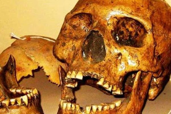 Sự thật về người khổng lồ tóc đỏ bí ẩn 'ăn thịt' đồng loại