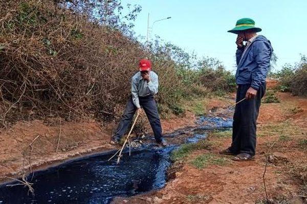 Đắk Lắk: Xử lý nghiêm những công ty xả thải nước bẩn ra hồ dân sinh