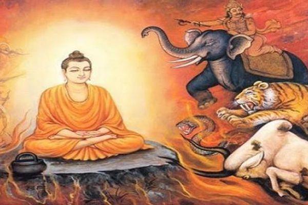 Hiểu rõ lời Phật dạy để lúc khó khăn nhất vẫn bình thản giữa đời