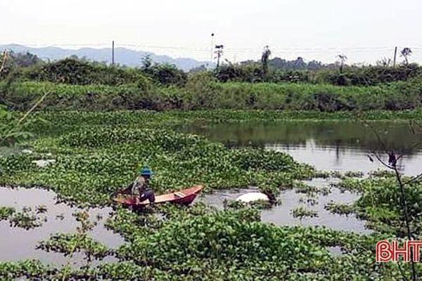 Lợn chết trôi nổi trên ao hồ ở Hương Sơn