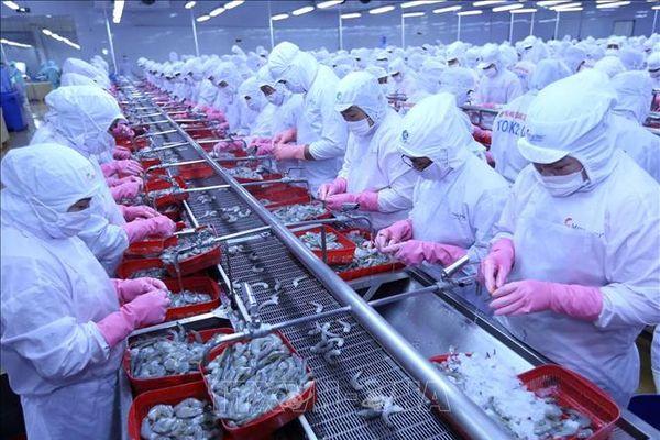 Các tổ chức nước ngoài dự báo kinh tế Việt Nam tăng trưởng tốt khi kiểm soát được dịch COVID-19