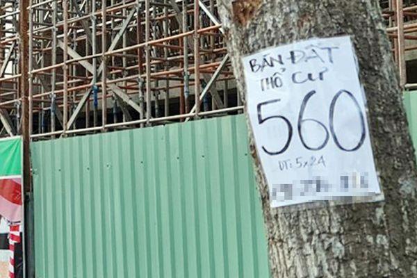 Giá đất ở Sóc Trăng đang bị 'thổi'?
