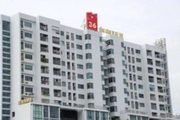 Tổng công ty 36 (G36) giảm lãi một nửa sau kiểm toán