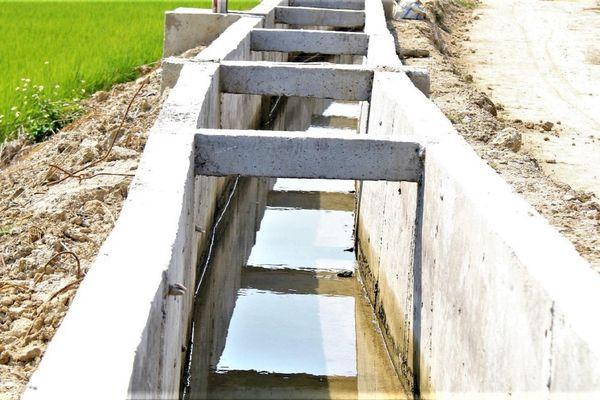 Đắk Nông: Thêm cánh đồng 'khát nước' bên công trình chống hạn hàng trăm tỉ