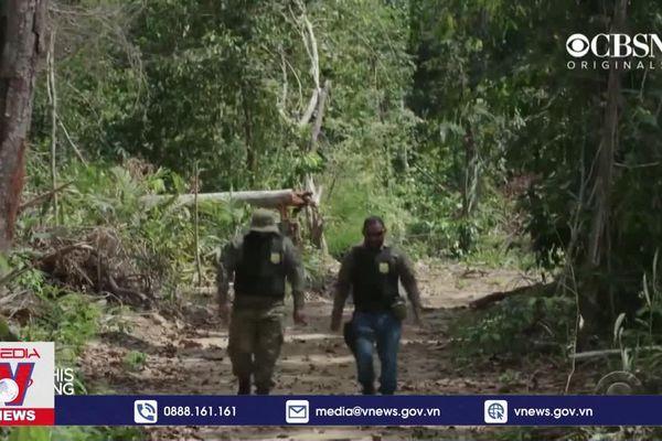 Brazil kêu gọi quốc tế đầu tư để bảo vệ rừng Amazon