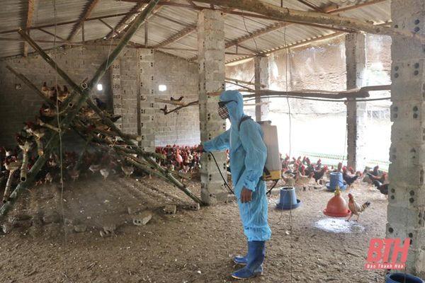 Xây dựng cơ sở chăn nuôi an toàn dịch bệnh