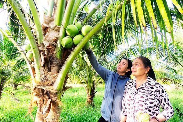 Agribank Chi nhánh huyện Vạn Ninh: Triển khai hiệu quả chính sách tín dụng phục vụ phát triển nông nghiệp, nông thôn