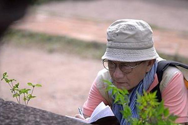 Văn hóa Champa trong dòng chảy văn hóa Việt
