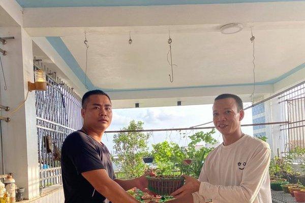 Ông chủ vườn lan Huỳnh Long chia sẻ bí quyết trồng lan thành công