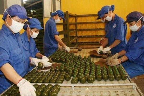 Nhiều ưu đãi cho người lao động làm việc trong Khu kinh tế - quốc phòng