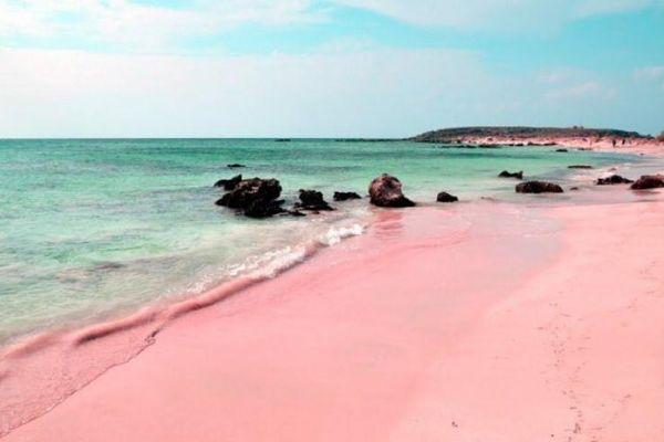Những bãi biển cát hồng đẹp mê mẩn lòng người