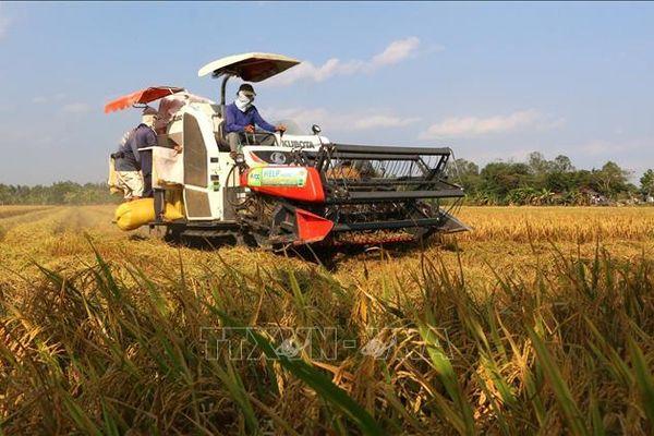 Hà Nội: Nhiều giải pháp để ngành nông nghiệp đạt tăng trưởng 4,2%