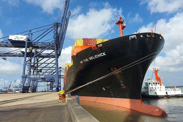Cảng SSIT đón tàu trực tiếp đi Bờ Tây Mỹ của hãng tàu MSC