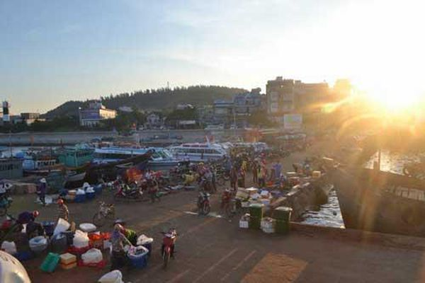 Trải nghiệm đi chợ cá trên đảo Lý Sơn