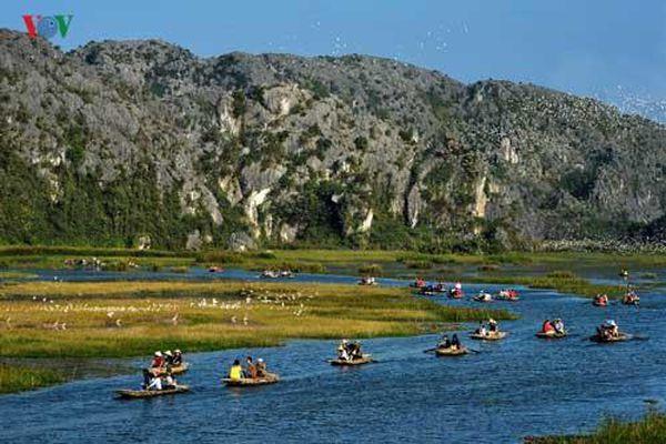 Khám phá vẻ đẹp đầm Vân Long - khu bảo tồn thiên nhiên đất ngập nước ở Ninh Bình