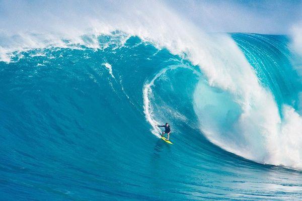 Lướt trên sóng… đời