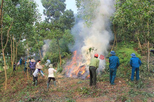Hà Nội rà soát 33 xã trọng điểm dễ xảy ra cháy rừng
