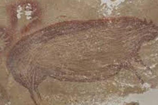 Tác phẩm nghệ thuật tạo hình cổ nhất thế giới