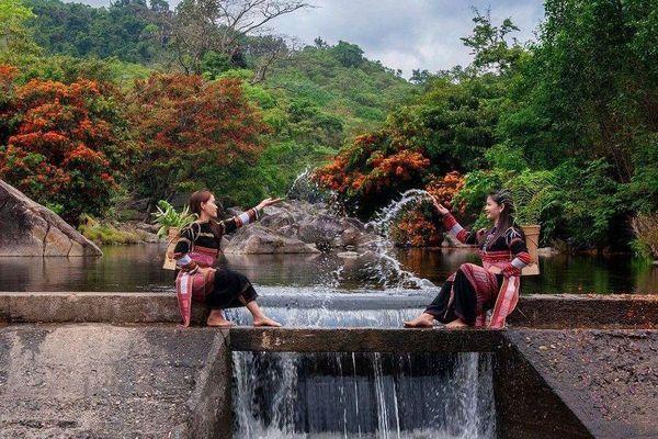 Hoa trang rừng nở rộ sau nhiều năm, suối Tà Má trở thành điểm 'check-in' mới của giới trẻ