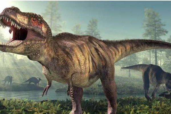 2,5 tỷ con khủng long bạo chúa từng thống trị Trái đất