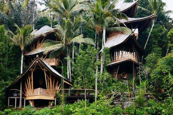 Ngôi nhà làm bằng tre giữa rừng tưởng bình thường, vào trong mới thật sự bất ngờ về không gian sống