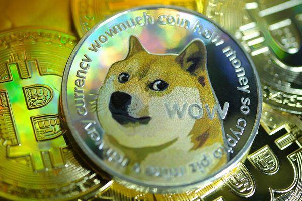 Mua 1.000 USD Dogecoin đầu năm, nhận 68.500 USD hiện tại
