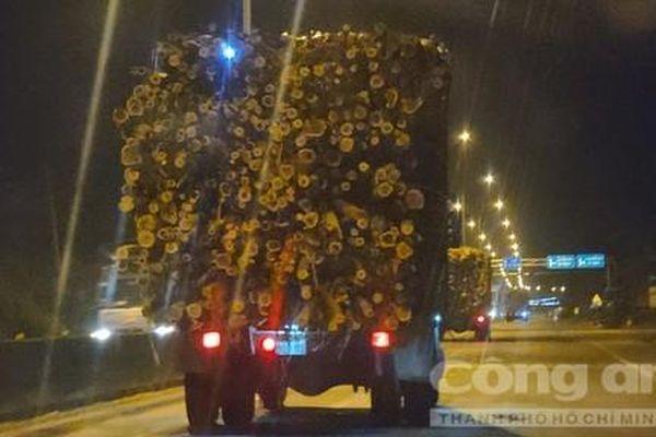 Khiếp sợ những 'hung thần' chở gỗ, dăm ở Quảng Ngãi, Quảng Nam