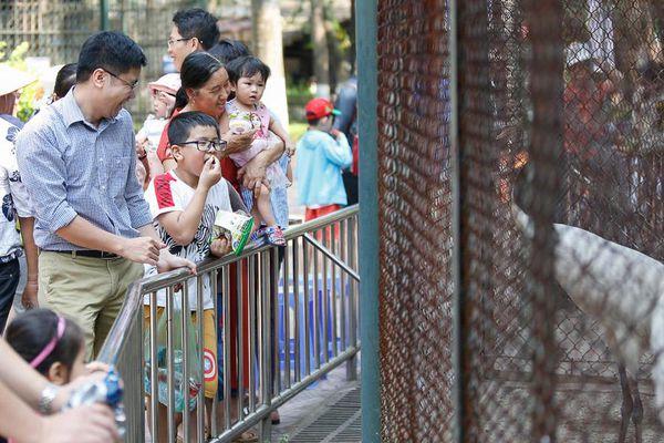 38.220 lượt khách đến Vườn thú Hà Nội dịp Giỗ Tổ Hùng Vương