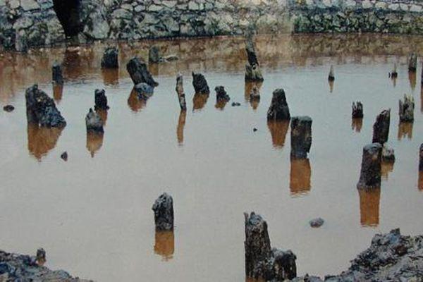 Cấp phép thăm dò khảo cổ tại một số khu vực thuộc di tích lịch sử Bạch Đằng, tỉnh Quảng Ninh
